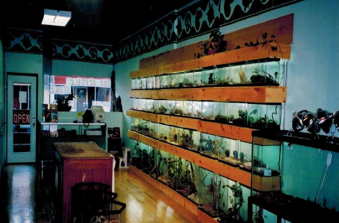 The Reptile Store