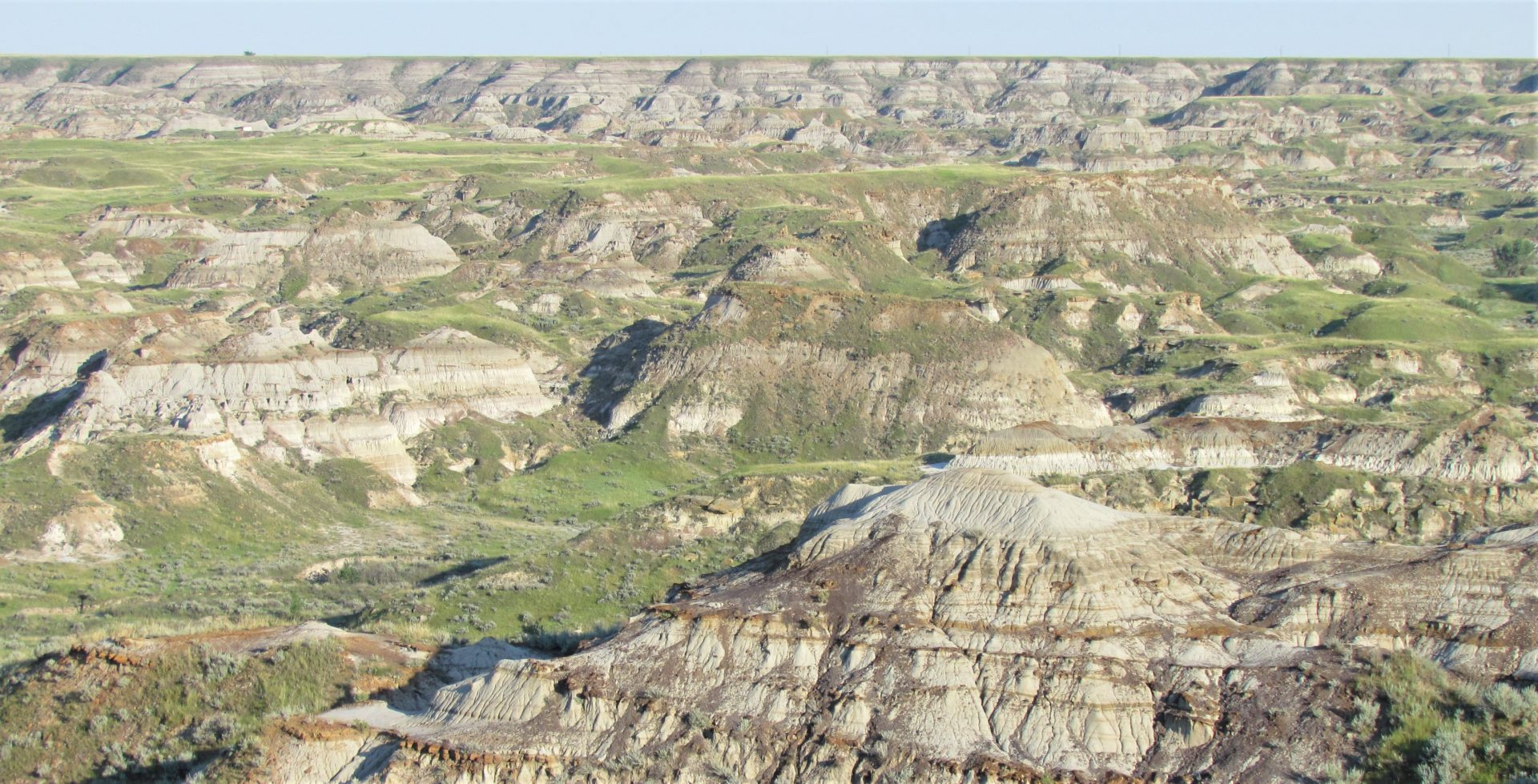 Alberta Badlands – July 28 to Aug 1