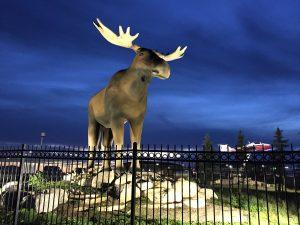 Mac the moose statue