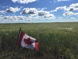 Saskatchewan prairies Canada flag