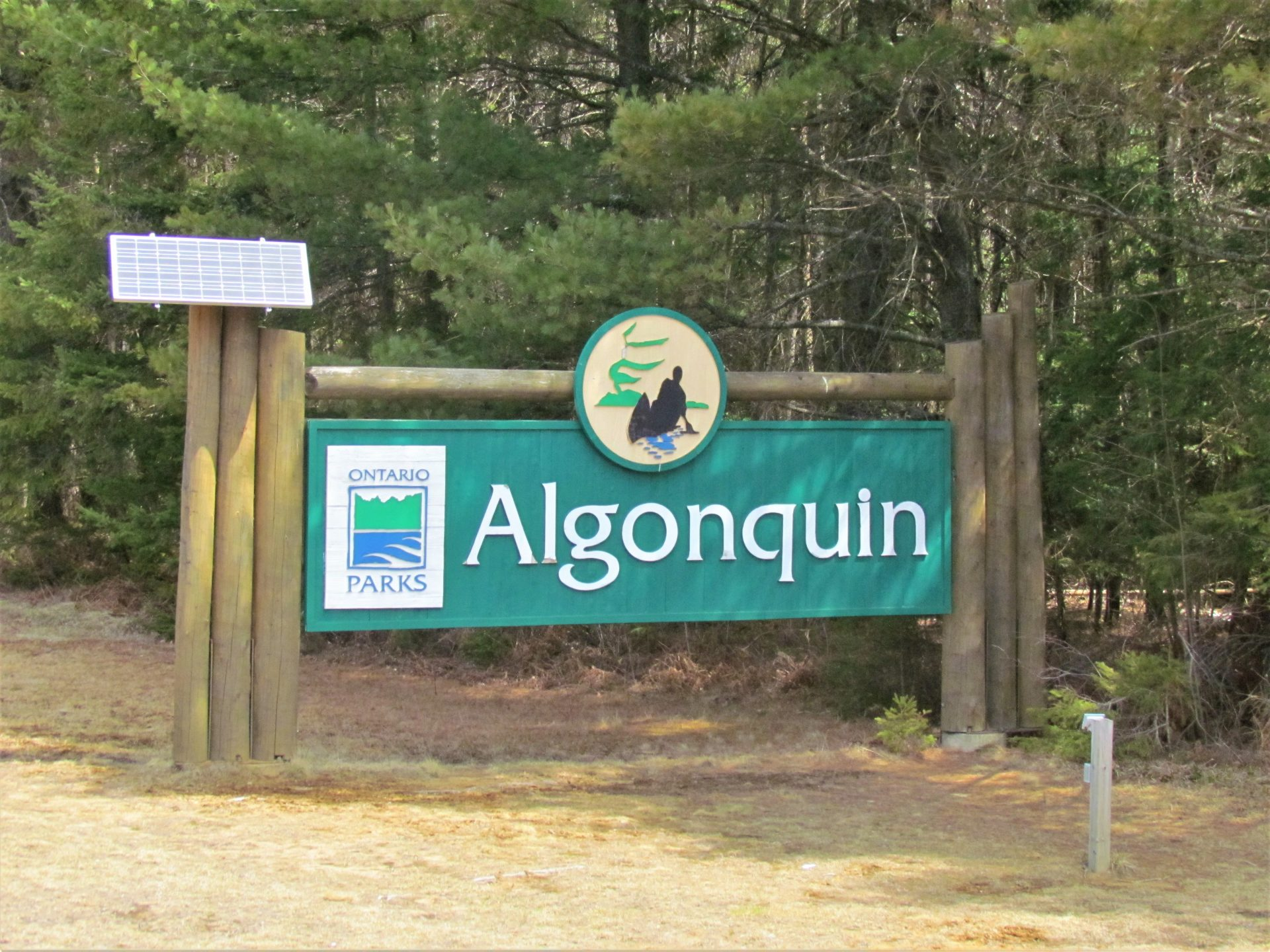 Algonquin Provincial Park – May 2 to May 11, 2020