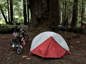 campsite at Avenue of the Giants