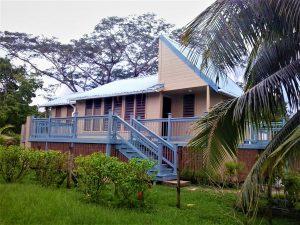 house, coconut tree, hibscus plant